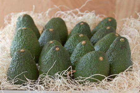 Farm Fresh Avocados-Winner