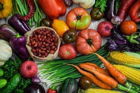 Easy Healthy Vegetarian Recipes