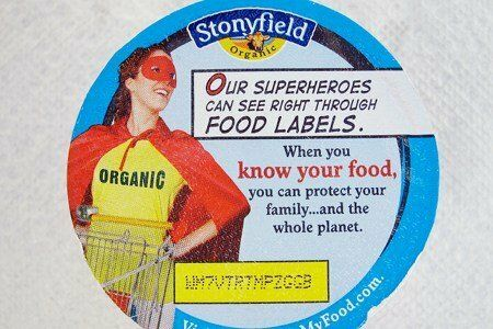 Stonyfield Yogurt Review