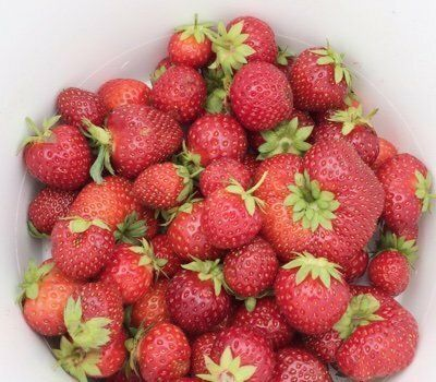Best Strawberry Recipes for Spring